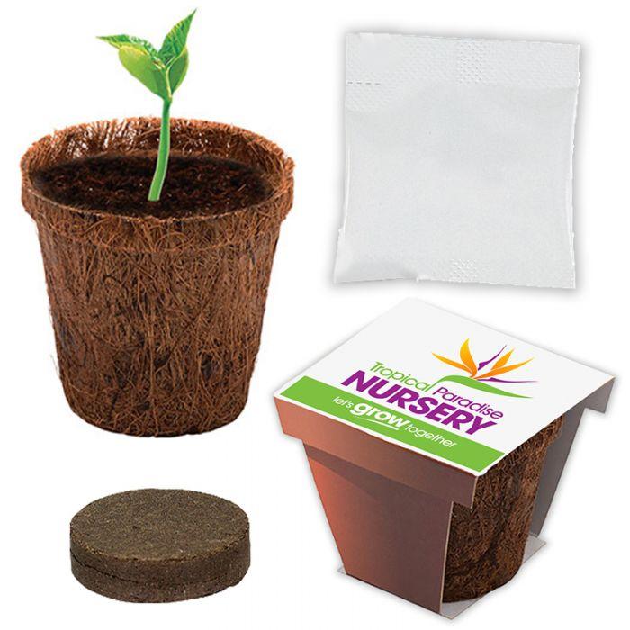 Custom Imprinted Coco Planter Kits