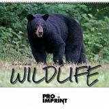 Promotional 2017 Wildlife Spiral Wall Calendars
