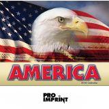 Promotional Logo 2017 America! Stapled Wall...
