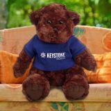 Custom Printed Traditional Teddy Bear
