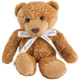 Customized 10 Inches Graham Bear